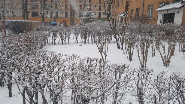 Sobota ze śniegiem  Lech Marcinczak, tvnwarszawa.pl
