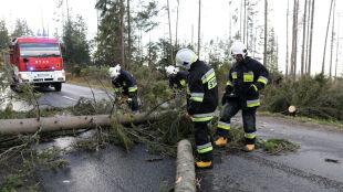 Halny szaleje w Tatrach. Drzewa padały na drogi, dachy i samochody